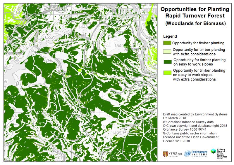 Timber Biomass Opportunities