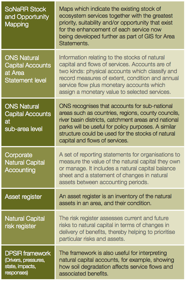 natural capital accounting tools