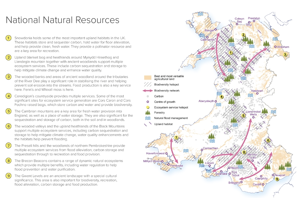 Future Wales Natural Capital Map