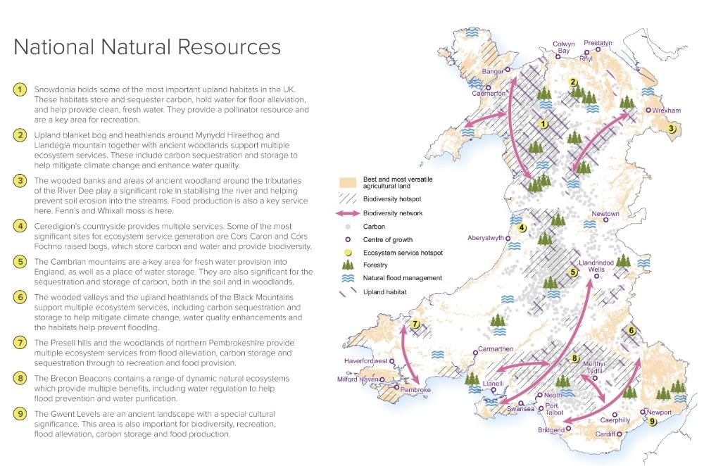 Future Wales Natural Capital Map