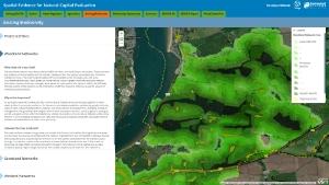 Wildlife network corridors